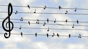 מתקינים מערכות שמע